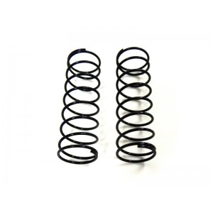 31029 Front Shock Absorber Springs 2P